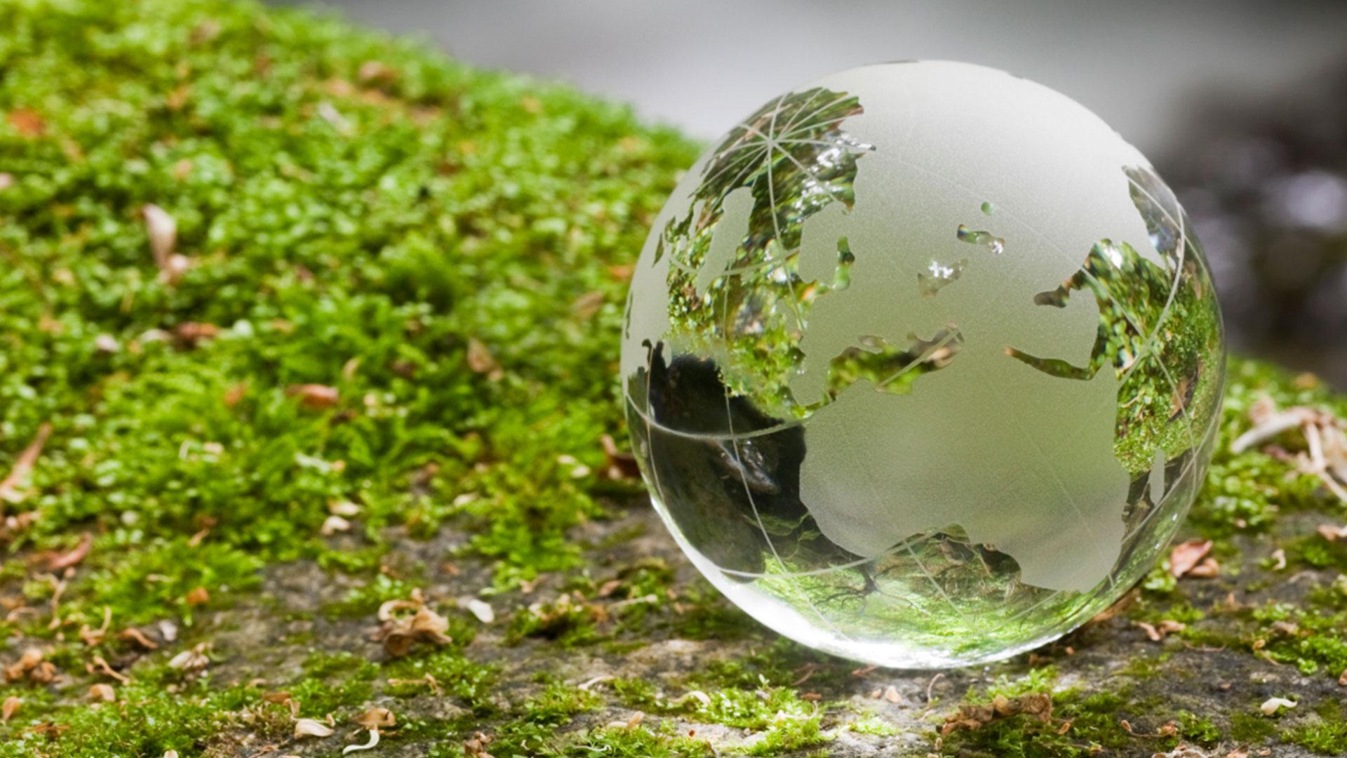 מדוע כל ארגוני איכות הסביבה בעולם ממליצים על מעבר לגז טבעי?